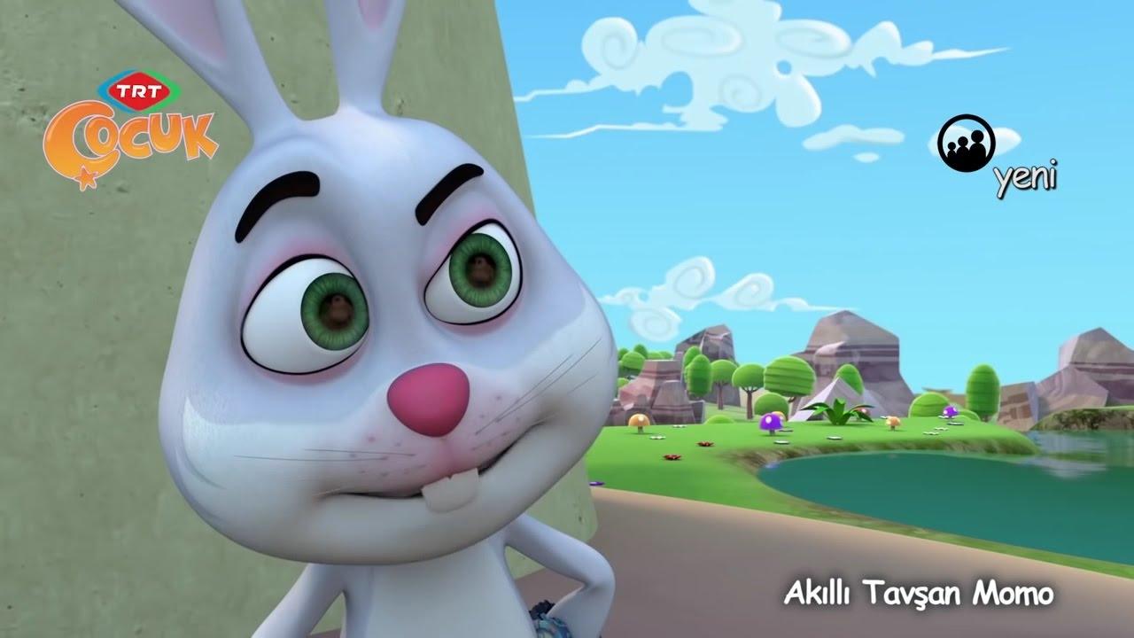 TRT Çocuk Akıllı Tavşan Momo 1 Bölüm