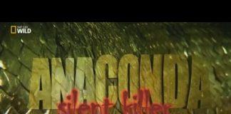 Sessiz Katil : Anakonda Belgeseli