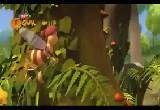 Arı Maya Uçuş İzni TRT Çocuk
